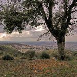 """Vista su Tivoli dal sentiero 330, primo tratto """"Via dei Lupi"""""""
