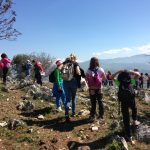Attività di educazione ambientale