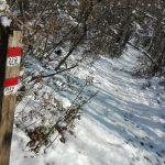 I sentieri sotto la neve (foto di Stefano Battaglini)