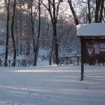 Nomentum sotto la neve