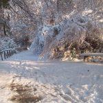 Nomentum sotto la neve (2)